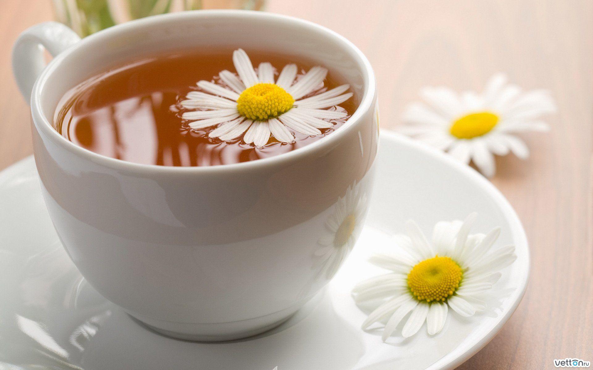 Зеленый чай и ромашка
