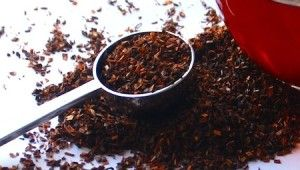 Африканский чай Ханибуш