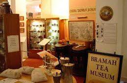 Лондонский музей чая